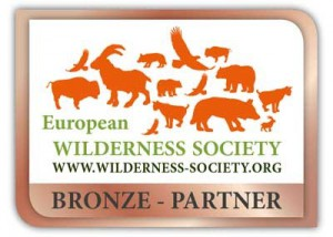 logo bronze partner